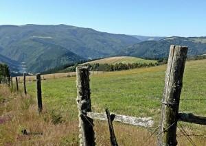 Prados en Asturias