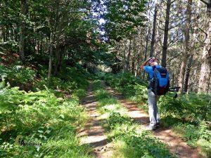 rutas en Asturias
