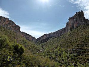 Entorno del arroyo de Cortes