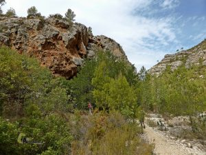 Cueva Tejedor