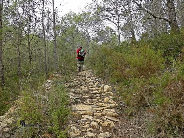 senderos de la Sierra de Espadan
