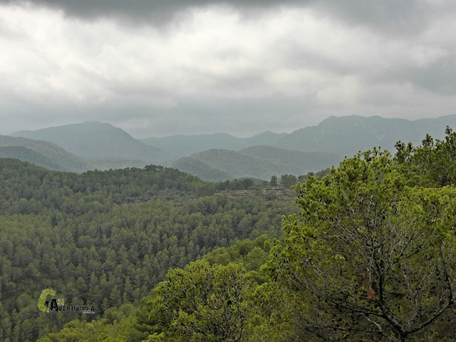 Bosques de la Sierra de Espadán