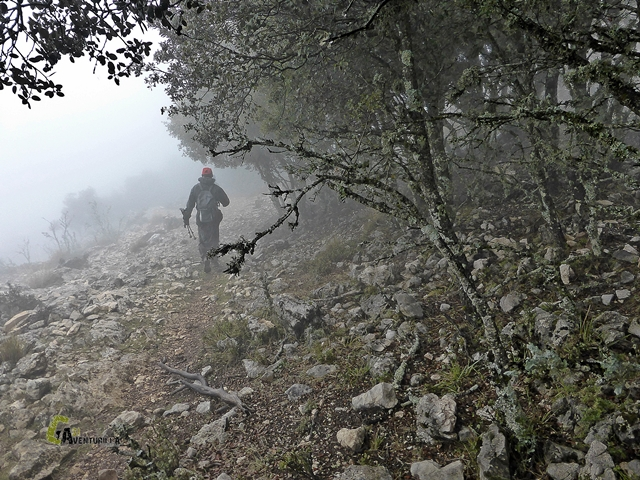 senderismo en la sierra de Segura