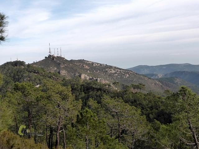 El Pico Bartolo