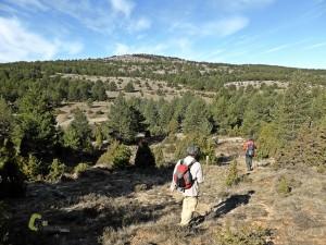 Cerro de los Siete Lugares