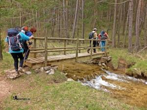 Para acceder a la fuente del Cura, cruzamos el río Alfambra, por medio de un pequeño puente de madera