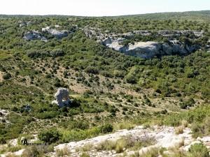 Rincón de San Pascual
