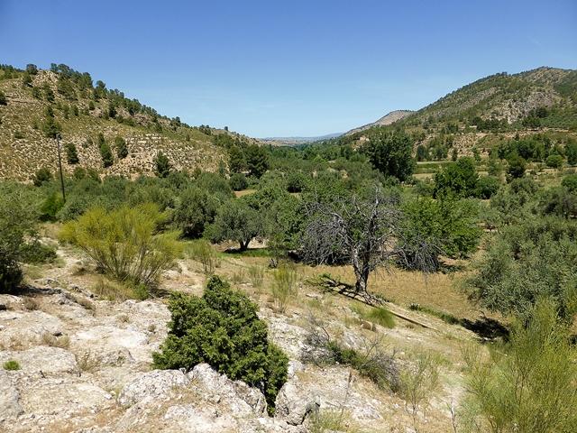 Valle del Taibilla