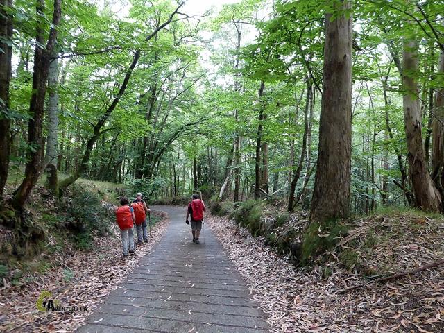 descenso por pista de hormigón en asturias