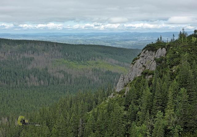 valle en los Altos Tatras