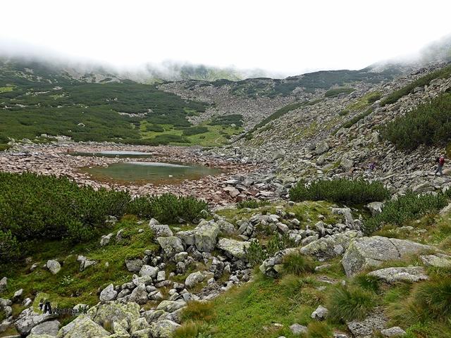 Czerwony staw en los Tatras