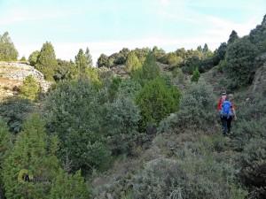 camino en Formiche Alto