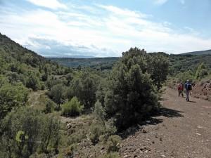 pista forestal cerca de Formiche Alto