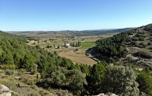 vega en Vilafranca