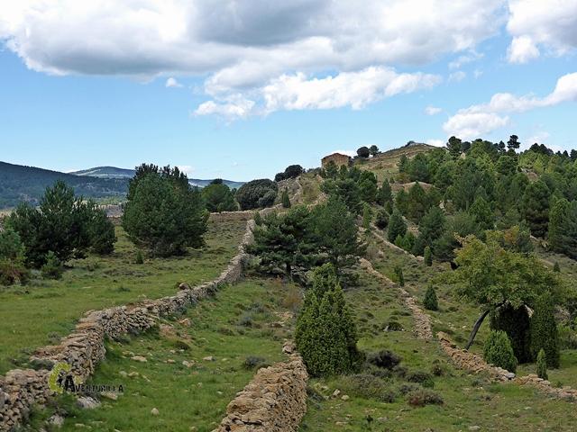 Els Mollats en Vilafranca