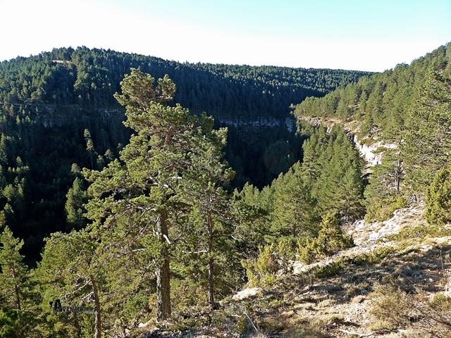 vistas del barranco de Zoticos