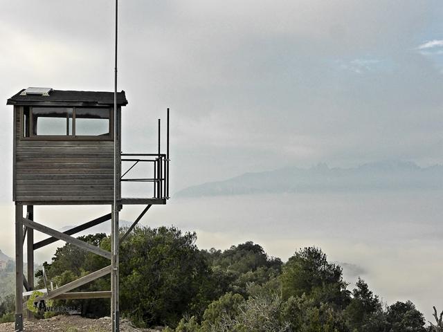 Torre forestal en l'Obac