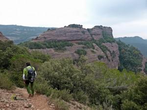 Roca Salvaje