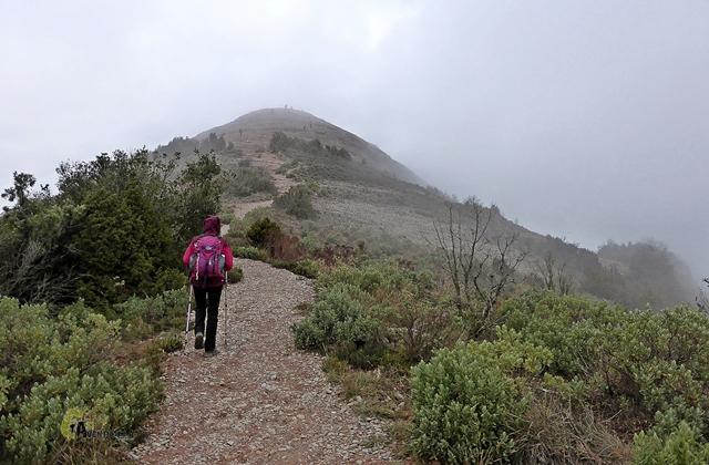 Subiendo al Montcau