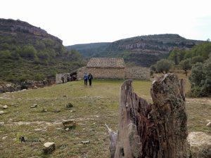 Casa del Olivar en la rambla Argongeña