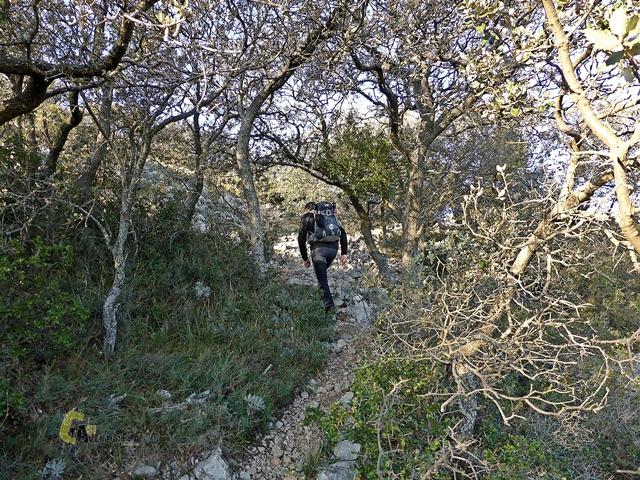 sendero en la sierra de Catí