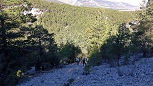 Pedrera en el barranco de las Valluertas