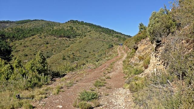 Pista hacia el Monte Pina