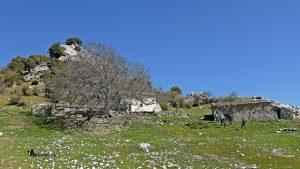 Cortijo de la Puerca en Castril