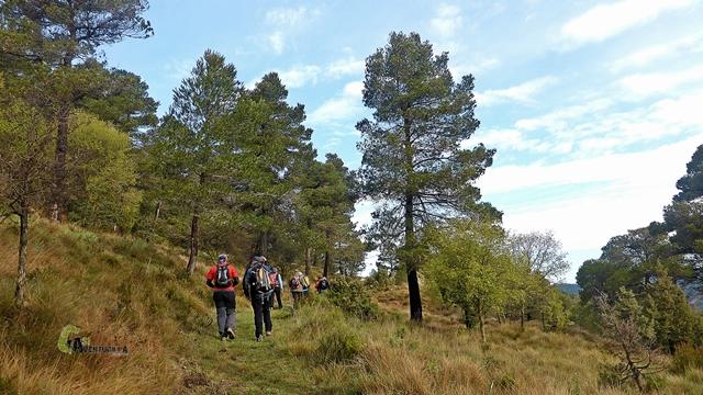 senda hacia el Cerro Palomeras