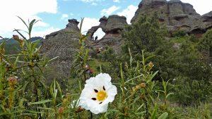 La Horadada, en la Serranía de Cuenca