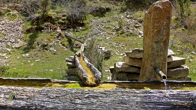 Fuente del Estellín