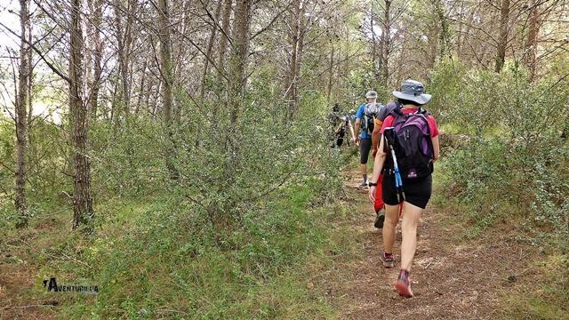 El recorrido, queda trazado en buena parte por senderos bajo el bosque