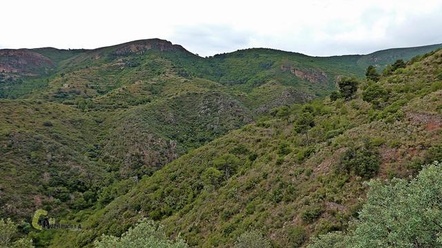 Rincón de la Mina