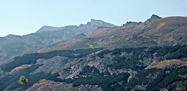 Pico Veleta