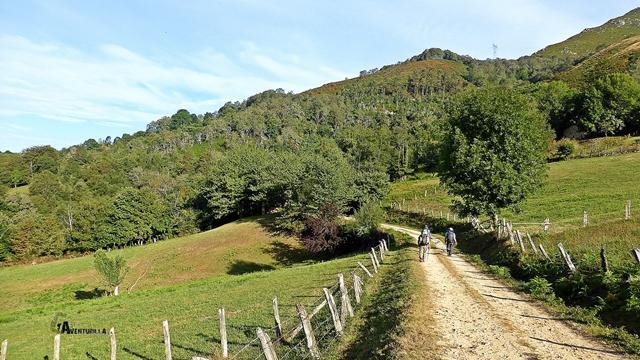 Pistas forestales en Asturias
