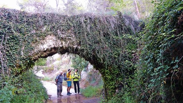 Arco de acueducto