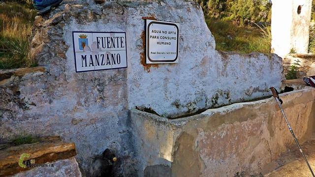 Fuente del Manzano