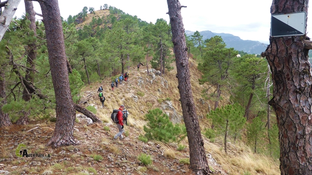 Hacia el Cerro del Entredicho