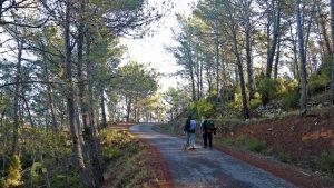 pista de Montán a Cortes de Aerenoso
