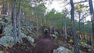 Trincheras de Mora de Rubielos