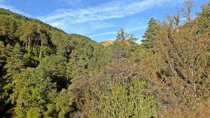Valle de Roncal