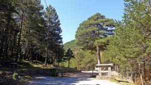 Área recreativa del Pino Escobón