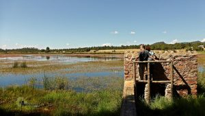 Observatorio de aves en Talayuelas