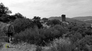 Torre Bivaldim