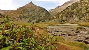 valle de l'Escaleta y Barrancs