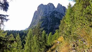 sendas en Dolomitas