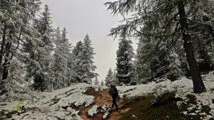 Senderos de Dolomitas