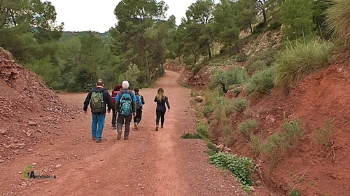 Por pista de la sierra Calderona