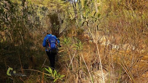 senda junto al río Lucena