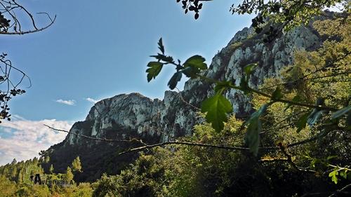 Cresta de la Segària